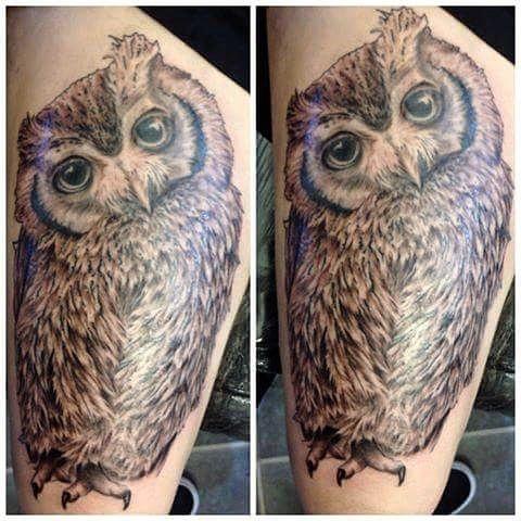 Grey owl in progress by @joshhingston11