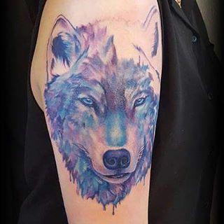 Watercolour wolf in progress by @joshhingston11