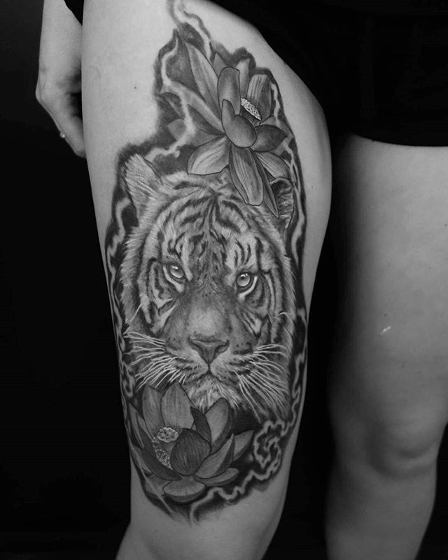 Healed shot of a tiger by @tregelles_hingston_tattoos