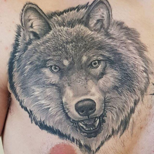 Healed wolf by @joshhingston11.   @yayofamilia @blackclaw  @ezcartridgecouk @silverbackink @dynamiccolor